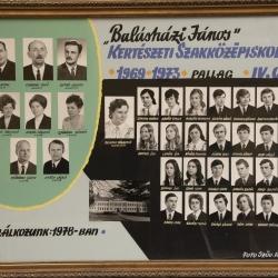 1973 IV.C.