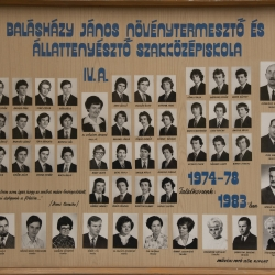 1978 IV.A.