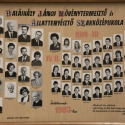 1978 IV.B