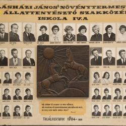 1979 IV.A.