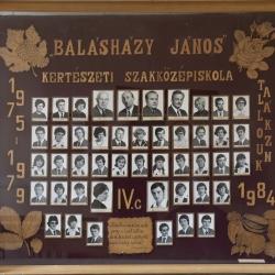 1979 IV.C.