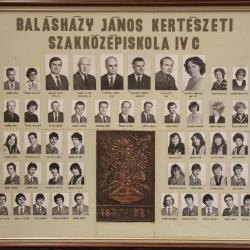 1981 IV.C.