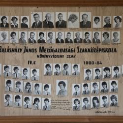 1984 IV.C.