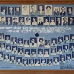1986 IV.B.