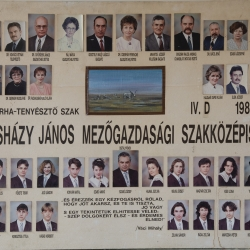 1993 IV.D