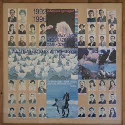 1996 IV.B