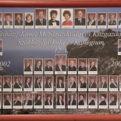 2006 12.A
