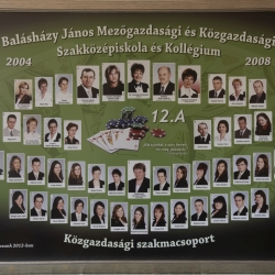 2008 12.A