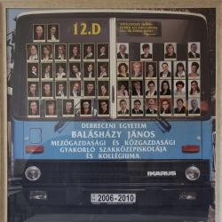 2010 12.D